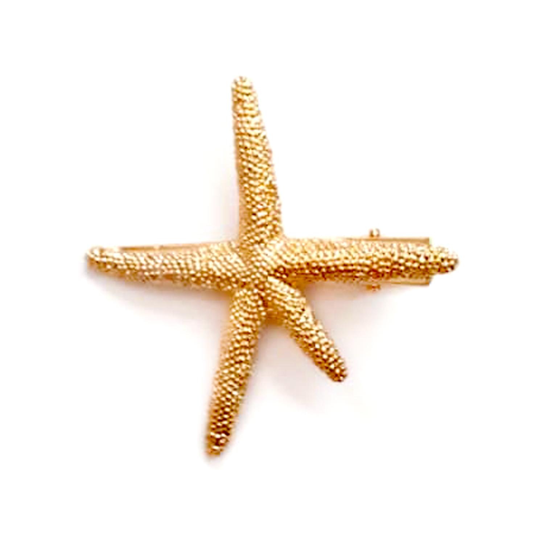 سنجاق سر طرح ستاره دریایی مدل ZV 043