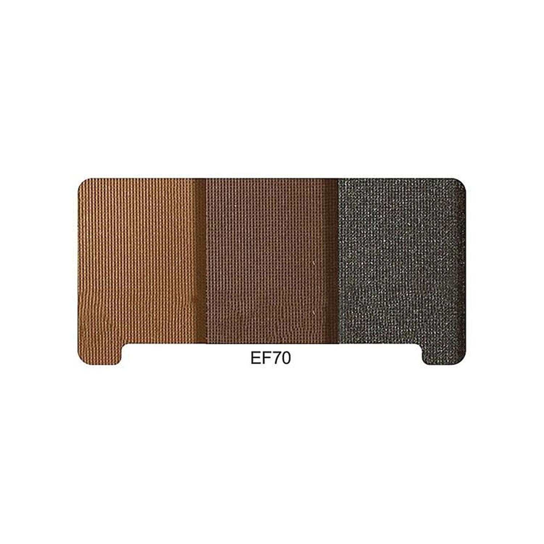 پالت سایه ابرو ایفسن شماره EF 70 وزن 10 گرم